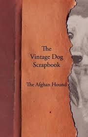 afghan hound vintage the vintage dog scrapbook the afghan hound various