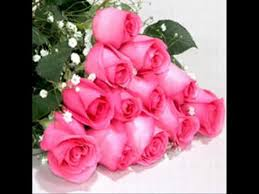 world best flowers for you wid my fav song 4u wmv youtube