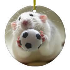 soccer ornaments zazzle ca