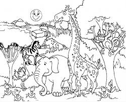 Coloring Forest Animals Coloring Book Sequel Booksforest Forest Animals Coloring Pages