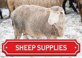 animal experts at blain u0027s farm u0026 fleet