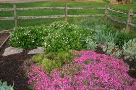 10 tips to building a raised flower bed acer landscape services