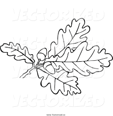 White Oak Leaf Royalty Free Clipart Of Black And White Oak Leaves And Acorns By