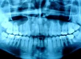 pediatric dental centers p c dr steve r lynn