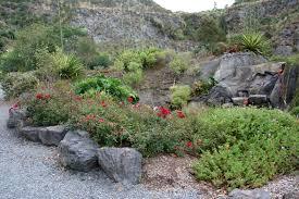 file whangarei quarry gardens 01 jpg wikimedia commons