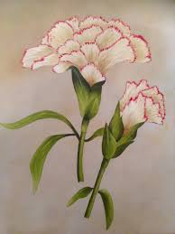 carnation flower oil painting by ned the hat on deviantart