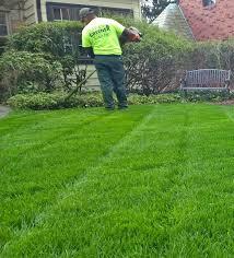 mcmurray lawn care dream greener lawn u0026 landscape llc