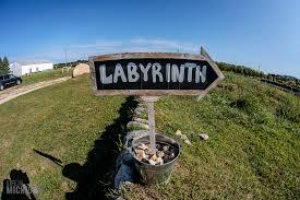 lavender labyrinth shelby mi photo gallery u2013 life in michigan