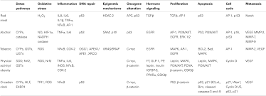 frontiers identifying molecular targets of lifestyle