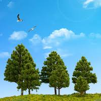 best o scale model trees to buy buy new o scale model trees