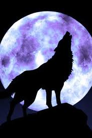 my wolfs pink moon practical magic and wolf
