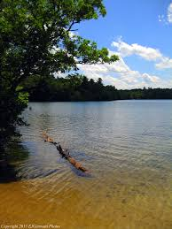 Rhode Island lakes images Carr pond trails walks in rhode island jpg