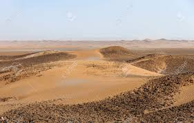 stone desert sand and stone dunes in hamada du draa moroccan stone desert