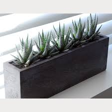 5 x cactus kiri wood planter lush modern touch of modern
