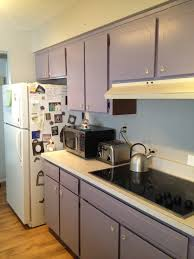 purple cabinets kitchen glamorous purple kitchen cabinets contemporary best inspiration