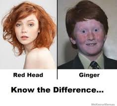 Redhead Meme - red head vs ginger know the difference weknowmemes