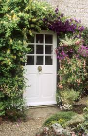 where to grow clematis clematis decorating ideas