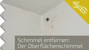 schimmel im schlafzimmer entfernen schimmel entfernen oberflächenschimmel an der decke beseitigen