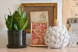 best indoor plants for cleaning the air u2013 my select life u2013 by the