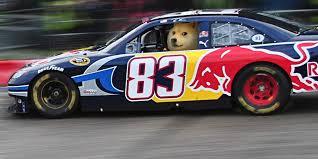 Doge Meme Car - race car doge blank template imgflip