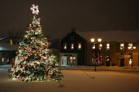 dublin christmas tree home design inspirations