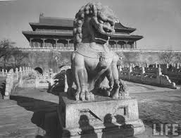 images of foo dogs quite continental wants foo dogs quite continental