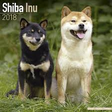Shiba Inu Christmas Ornament Shiba Inu Calendar 2018 Shiba Inu Dog Breed Calendar Shiba