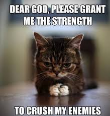 Bad Ass Memes - cat memes 25 cute and funny cat memes badass memes com funny