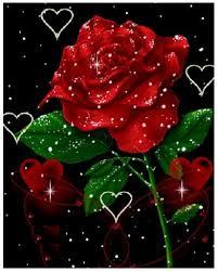 imagenes de amor con rosas animadas ramos de rosas rojas animadas imagen de rosas rojas
