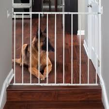 Baby Gate For Banister And Wall Wall Mounted Pet Gate You U0027ll Love Wayfair