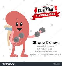 cartoon no alcohol kidney health awareness template stock vector 377334079 shutterstock
