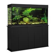 design marvelous beautiful blue water 55 gallon fish tank for