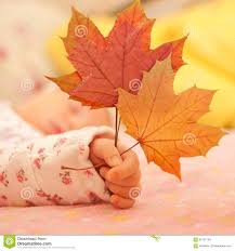 cute baby boy autumn leaves wallpapers autumn baby little kid in fall leaves crown child boy yellow