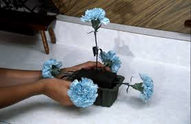 blue carnations create a blue carnation arrangement