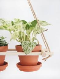 Diy Hanging Planters by Plant One On Me A 5 Hanging Planter Hack Planters Target And