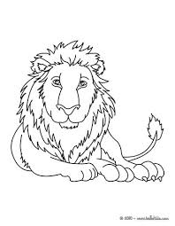 lioness lion cub coloring pages hellokids