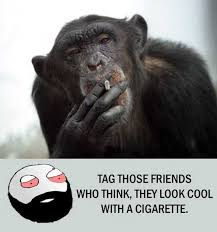 Cigarette Memes - dopl3r com memes tag those friends who think they look cool