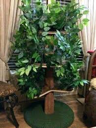 cat trees that look like trees cool cat trees cool cat trees cool