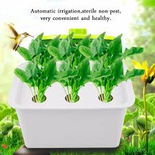 new 6 holes 220v 110v plant site hydroponic system indoor garden