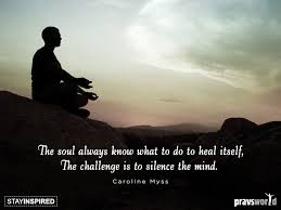 Challenge What To Do The Challenge Is To Silence The Mind Pravs World