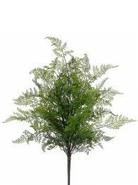 Silk Plants Direct Jade Plant Plants U2013 Ooflowershop Com