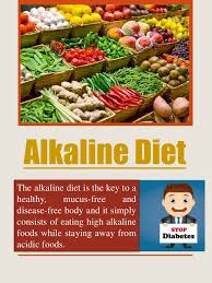 high alkaline foods google
