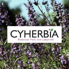 cyherbia youtube