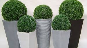 make your christmas more attractive with boxwood balls decoration