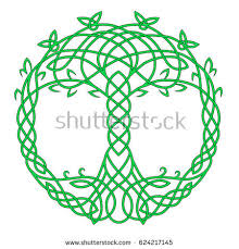 celtic knot pictures stock images royalty free images vectors