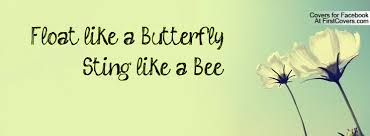 float like a butterfly sting like a bee quotes