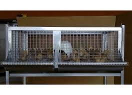 reti per gabbie gabbia per pulcini antitopo cm 107x50