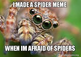 Afraid Of Spiders Meme - i made a spider meme when im afraid of spiders hipster spider