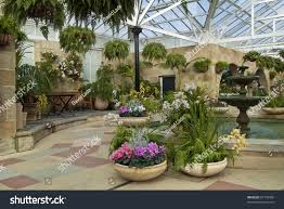 indoor spice garden cyclamen pots indoor garden room stock photo 61778458 shutterstock