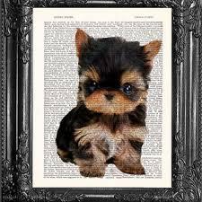 shop tiny puppies wanelo